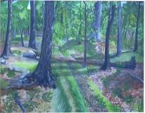 Lenape Trail